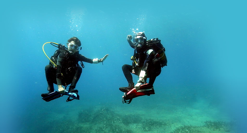 Crete Dive together Five Star. PADI Dive center. Scuba diving, Dive2gether PADI cources & certificates in Plakias, Crete. Rethymno diving center, holiday activities in Crete. Adventure holidays in Rethymno, Crete.